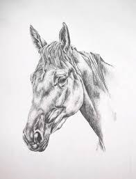 photo to portrait striking equestrian graphite portraits