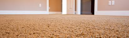 shaw carpet reviews indianapolis shaw carpet installation