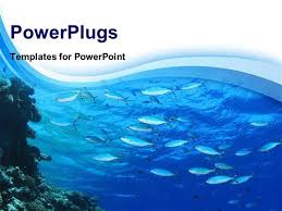 powerpoint templates free download ocean fish powerpoint template underwater ocean powerpoint template