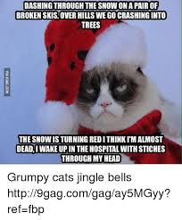 Grumpy Cat Snow Meme - dashingthrough the snow on a pairof broken skis over hills we go