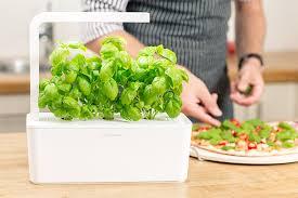 Easy Herbs To Grow Inside Amazon Com Click U0026 Grow Indoor Smart Fresh Herb Garden Kit With