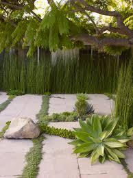 modele jardin contemporain petit jardin les règles pour un aménagement réussi