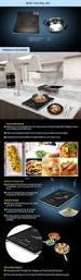 elba slim induction cooker