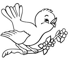 spring coloring pages preschool spring bird coloring book