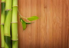 bamboo flooring vs hardwood comparing the popular coatings