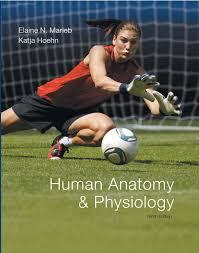 Human Anatomy And Physiology 8th Edition Marieb U0026 Hoehn Human Anatomy U0026 Physiology Plus Masteringa U0026p With