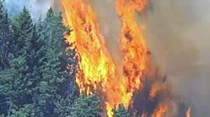 Wild Fires In Canada Now by Aerial View From Ctv News Chopper Shows Raging Fire In B C Youtube