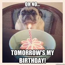 its my birthday tomorrow memes keywords and pictures