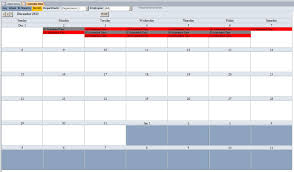 microsoft access consultant scheduling database template