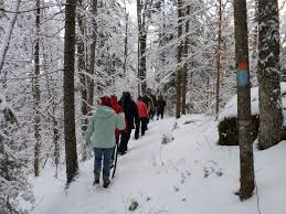 vermont new years vermont state parks offer new year s day hikes kids vt