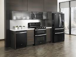 Kitchen Cabinets With Frosted Glass Doors Kitchen Awesome Kitchen Remodel Ideas Black Appliances With
