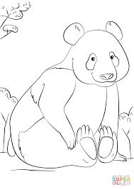 related to cute panda