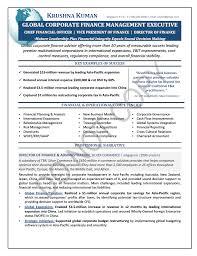 director of finance resume tori nominated executive resume sample finance mary elizabeth