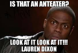 Anteater Meme Generator - anteater meme generator 28 images i pumped yer maw mon 100