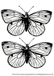 coloring pictures small butterflies butterfly unique small