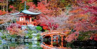 la vie en style japan