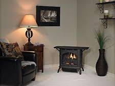 Vent Free Lp Gas Fireplace by Vent Free Gas Stove Ebay