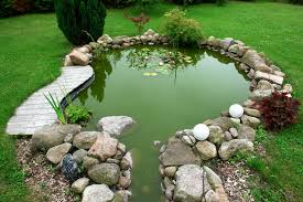 getting prepped for your backyard pond dreamco inc