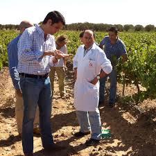 spanish vines cool hunting