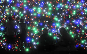 Pictures Of Christmas Lights by Many Places To See Christmas Lights In Tampa Bay Area Tbo Com