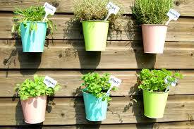 Modern Hanging Planter by Make Your Own Modern Diy Hanging Planter Ehow
