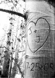initials carved in tree save the date jeff modern wedding