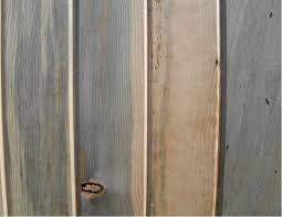 1x8 blue t u0026g paneling sustainable lumber company