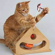 the 25 best best interactive cat toys ideas on diy