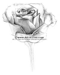 how to draw a rose learn to draw rose pencil drawings u2014 art is fun