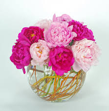 peonies delivery peonies fl same day delivery