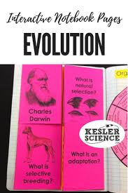 9 best adaptions u0026 evolution images on pinterest life science