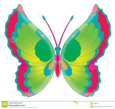 butterfly design clipart