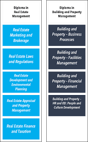 real estate construction and building management