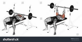 closegrip barbell bench press 3d illustration stock illustration