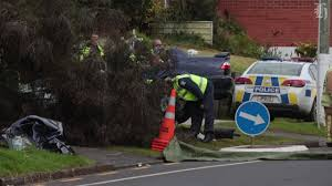 fatal lamborghini crash fatal crash man dies two women taken to hospital after otara