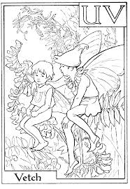 print letter v for vetch flower fairy coloring page or download