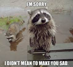 I Am Sorry Meme - i m sorry i didn t mean to make you sad sympathy coon quickmeme