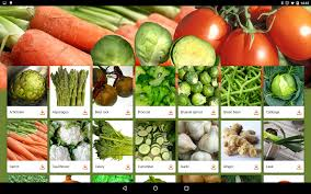 vegetable names for kids android apps on google play