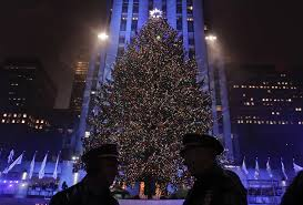 2017 rockefeller center tree has been chosen silive