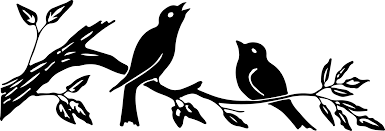 silhouette images birds on branch 3 colors the graphics