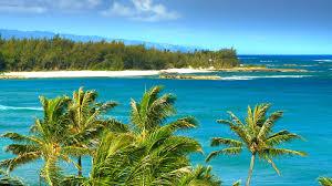 hawaii beach house wallpaper