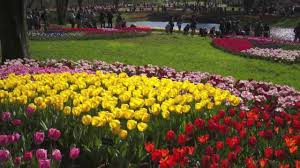 spring the season of flowers youtube