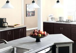 cuisine bi couleur peinture murale cuisine peinture murale cuisine 50 exemples design