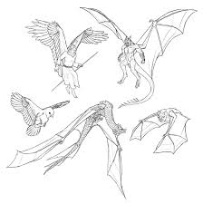 how to draw and animate wings birds bats and more autodesk
