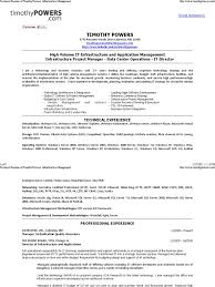 Resume Of It Director Download Timothy Vinegar Resume Before Docshare Tips