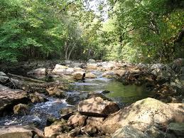in fall kejimkujik national park wikipedia