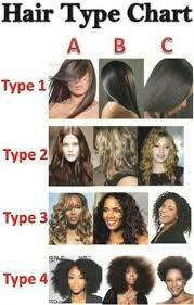 hair styles for a type 2 1000 ideas about hair type chart on pinterest natural hair tips