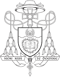 bishop barron on his episcopal coat of arms word on fire