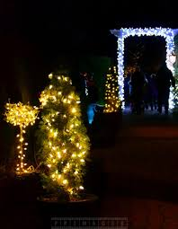 Buy Outdoor Christmas Decorations Canada by Christmas Outdoor Decorations Canada Holiday Living In Lighted