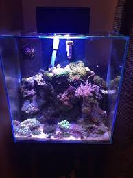 fluval edge marine light modified fluval edge 46 litre marine fish tank with a ultrabrite